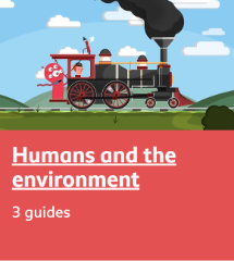 Humans and environment